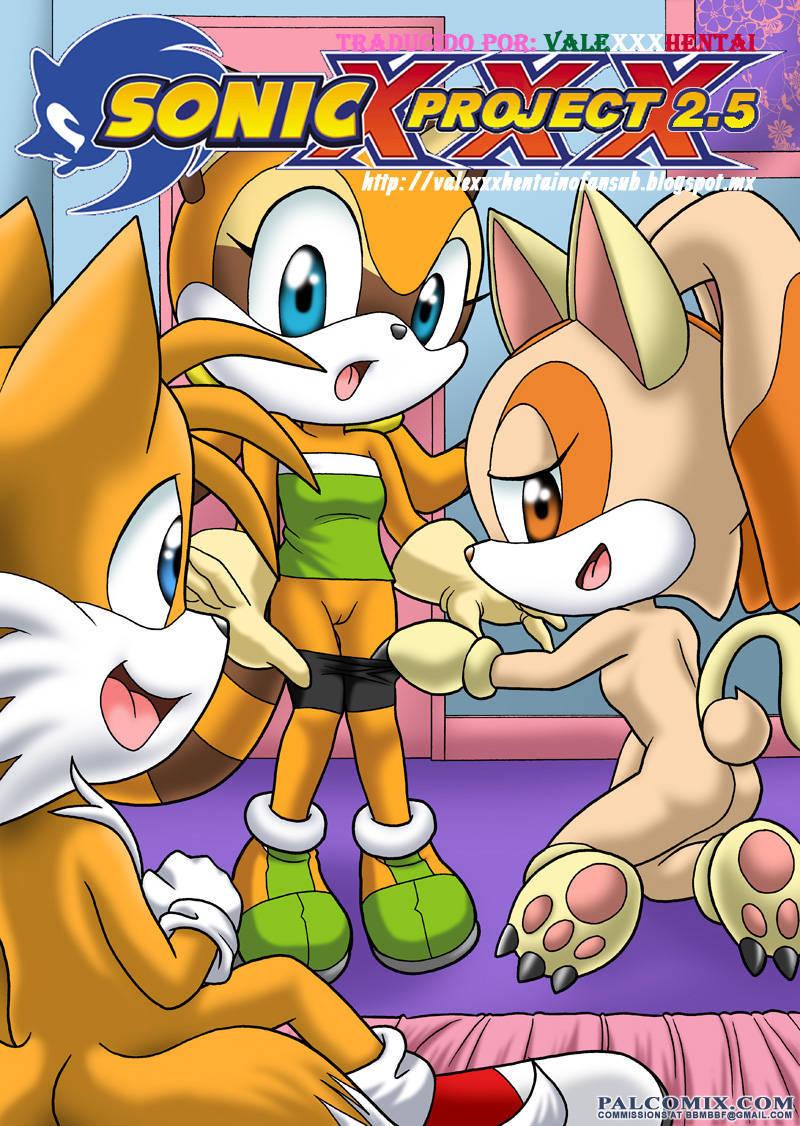Proyecto Sonic XXX – Parte 2.5